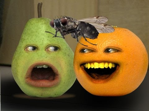 pet - Orange gets a new pet...that starts eating everyone in the kitchen! FREE version of my video game Kitchen Carnage: iTunes: http://bit.ly/AOKitchenCarnageLite...