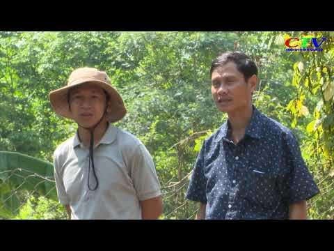 Mô hình nuôi dê - hướng đi mới trong phát triển kinh tế gò đồi ở Cam Lộ