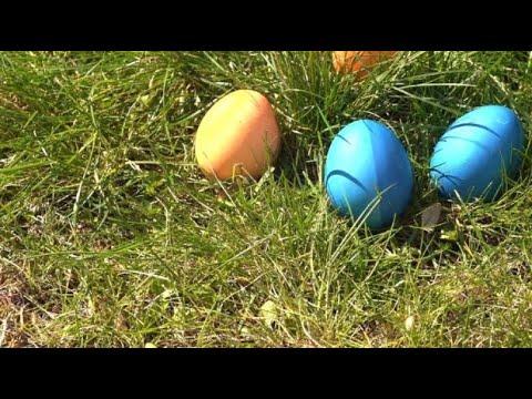 Osterratgeber: Alles rund ums Ei - Tipps und Tricks
