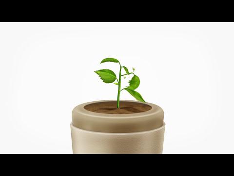 Bios Urn - Life After Life