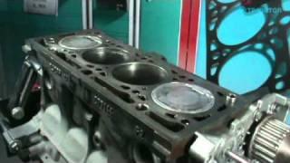 Sincronización Motor Nissan Platina, Aprio - Renault Clío, Kangoo y Sandero