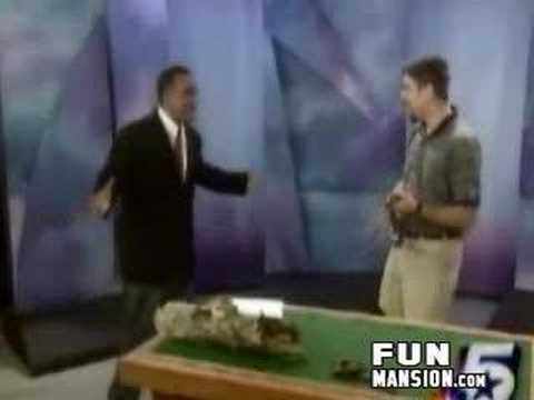 0 Monday Mood Ups: Newscaster Shits His Pants, Scares A Texas Rat Snake