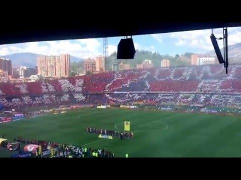Salida en el Clásico DIM vs. NACIONAL #ElfútbolCuentaConmigo - Rexixtenxia Norte - Independiente Medellín
