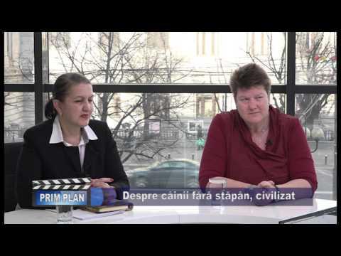 Emisiunea Prim-Plan VPTV – 18 februarie 2016