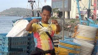 Sandakan Malaysia  City new picture : Sandakan Fish Market and Harbor, Malaysia