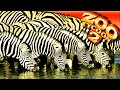 Zoo Tycoon 2 02 Conhecendo Os Animais campanha Pt br Ne