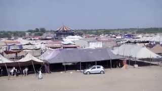 Barmer India  city images : The Animal fair, Tilwara, Barmer, Rajasthan, India