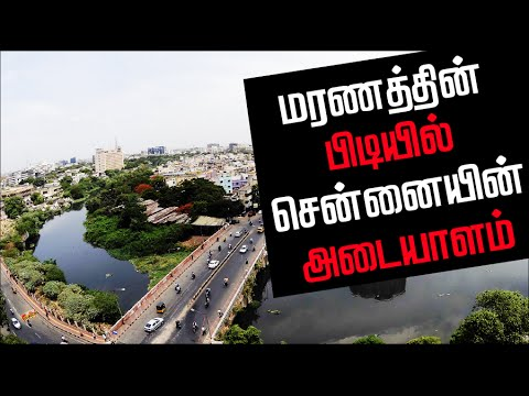 History-of-Cooum-River