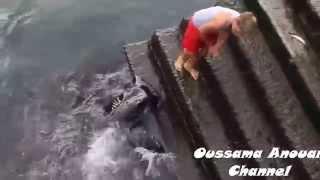 Chłopiec bawi się z morskim stworem! Gdy zobaczyłam co to jest byłam w szoku, że się nie bał!