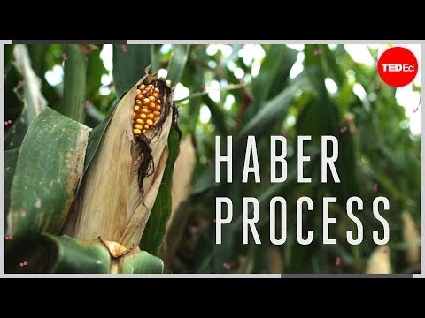 process - View full lesson: http://ed.ted.com/lessons/the-chemical-reaction-that-feeds-the-world-daniel-d-dulek How do we grow crops quickly enough to feed the Earth's...