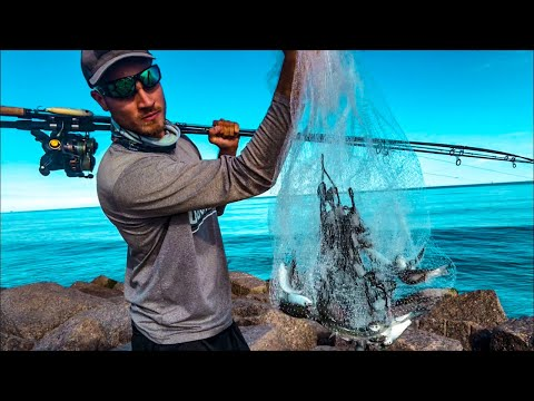 Video Jetty fishing - things are happening... download in MP3, 3GP, MP4, WEBM, AVI, FLV January 2017