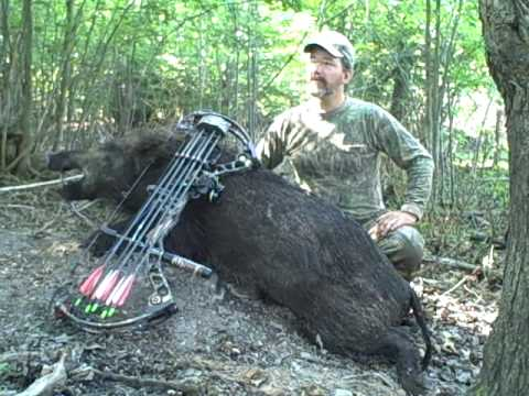 Russian Boar   SCI Boar Hunting   Ready for Africa!