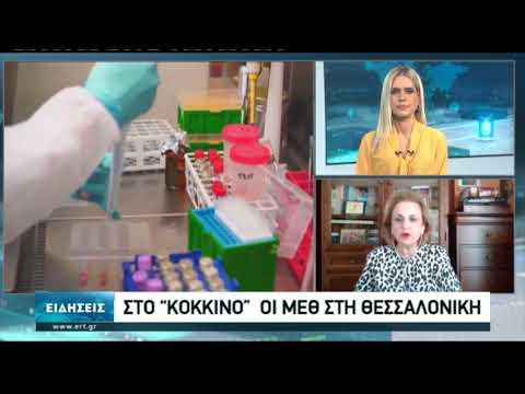 Δύσκολη η κατάσταση στα νοσοκομεία της Θεσσαλονίκης | 09/11/2020 | ΕΡΤ