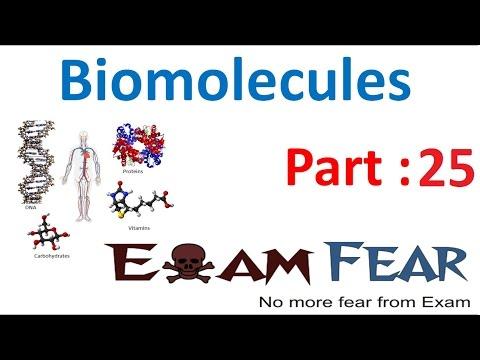 Biology Biomolecules Plants part 25 (Lipids: Fatty acids, Phospholipids) CBSE class 11 XI