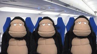 Fafa Explains Airplane Etiquette