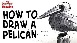 Requested by Linda Henderson, this video shows you how to draw a pelican sitting on a post but the sea.With award winning illustrator, Shoo RaynerYou can support my videos on Patreon ➡️ http://bit.ly/ShooPatreonPageSubscribe for lots more drawing :) ➡️ http://bit.ly/Sub2ShooEveryone asks about the tools I use when I'm out using my sketchbook. here's a video to show you what and how I use them. https://youtu.be/QJwjV1FKdygThe Pentel Aquash Brush is here in the Uk http://bit.ly/PentelAquabrushUKand here in the US   http://bit.ly/PentelAquashBrushUSARotring Tikky Graphic in the UK here http://bit.ly/TikkyGraphicUKin the USA http://bit.ly/TikkyGraphicUSThe Cotman sketching watercolour set is here in the UK http://amzn.to/1gNpZ8sand in the US here: http://amzn.to/1gaG6qAThe Seawhite of Brighton a5 travel journal is here in the Uk http://bit.ly/SeawhiteJournalUK and here in the USA http://bit.ly/SeawhiteA5JournalUSATwitter http://twitter.com/shooraynerGoogle+ https://plus.google.com/u/0/117947137150973770218Facebook http://www.facebook.com/profile.php?id=750207845Website http://www.shooraynerdrawing.commusic by http://www.youtube.com/cleffernotesShoo Rayner is an award-winning illustrator and author of over 200 books for children. The Shoo Rayner Drawing Channel won the 2011 YouTube NextUp award and is dedicated to teaching, promoting and inspiring drawing for everyone from beginners to experts who like to see how other people do what they do.Shoo believes that everyone can draw but they lose confidence at school when they think they have to make their drawings look perfect or in a recognised classic style.Drawing is just making marks on paper and you are allowed to draw anyway you likeDrawing is all about getting ideas out of you head and on to paper, it's about understanding how the world is put together and it's about having fun, with no stress, just drawing for fun.Make sure you are subscribed for new drawings every Monday and Friday in you inbox and learn to draw bet