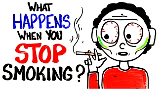 Download Youtube: What Happens When You Stop Smoking?