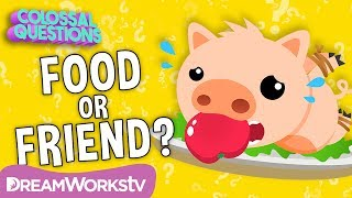 Why Do We Eat PIGS, but Not CATS? | COLOSSAL QUESTIONS