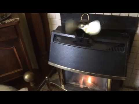 Caframo EcoFan Belair Review for Valor Homeflame Super 470MN Gas Stove
