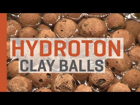 Hydroponics with Hydroton Expanded Clay Balls
