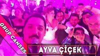 Ayva çiçek - Video Selfie - Canses Düğün Organizasyon ve Grup Canses