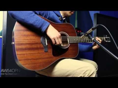 Cort AW54OPN Acousticguitar