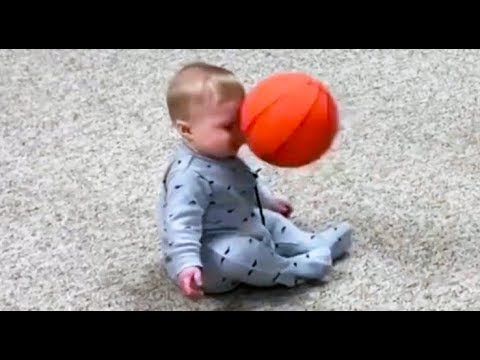 Funny cat videos - FUNNY BABIES vs Toys FAILS - Without LAUGH You can not watch this Compilation