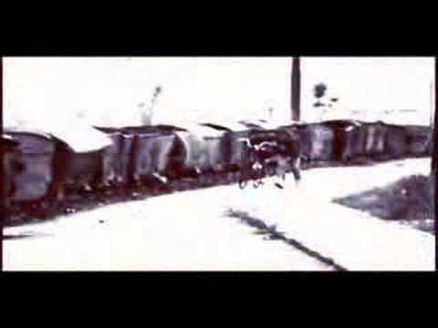 Tekst piosenki George Michael - Miss Sarajevo po polsku
