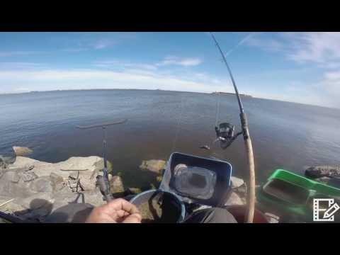ловля леща на финском заливе видео