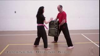 Japanese Round Kick
