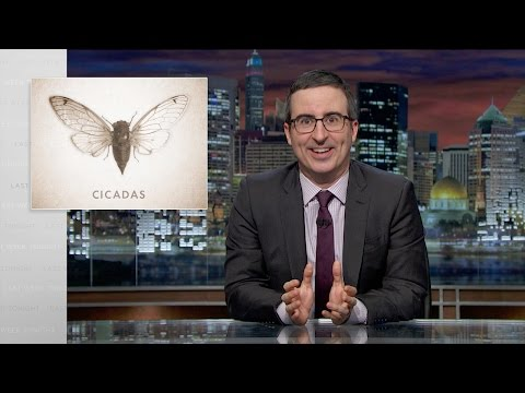 John Oliver Catches The Cicadas Up On the Last 17 Years on Earth