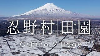 空撮 忍野村の田園 | Mt. Fuji from Oshino village in winter