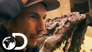 Parker Runs For His Life To Save His Sludge Filled Sluice | NEW Gold Rush Season 9