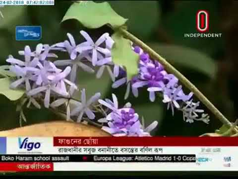 Flowers bloom in Ramna Park (24-02-2018)