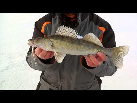 Ловля судака на джиг, весной в апреле-Рыбалка на нижней Волге видео «Рыболовные путешествия»