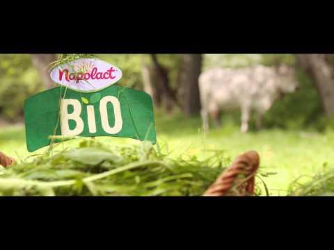 Noile lactate BIO de la Napolact