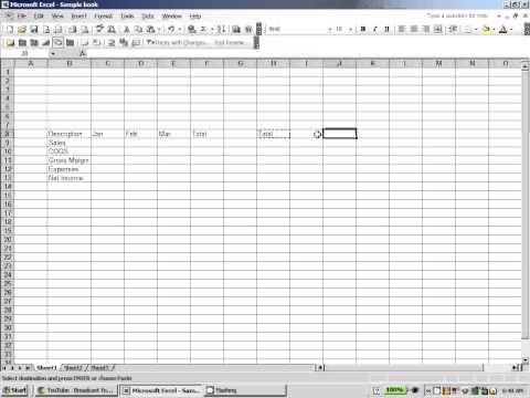 Excel 2003:  Copy and Paste