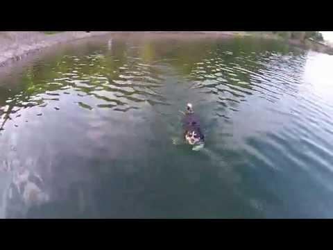 Waldeck Drone Video