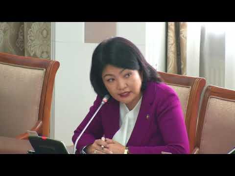 Б.Саранчимэг: ШУ-ны зөвлөл гэдгийг ямар үндэслэлээр оруулж ирж байгаа вэ?