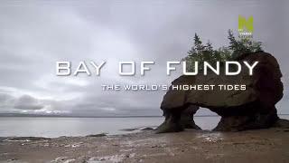 Video Cuộc sống ở đầm lầy rộng lớn - Những cơn thủy triều cao nhất thế giới - Vịnh Fundy, CANADA MP3, 3GP, MP4, WEBM, AVI, FLV Maret 2019