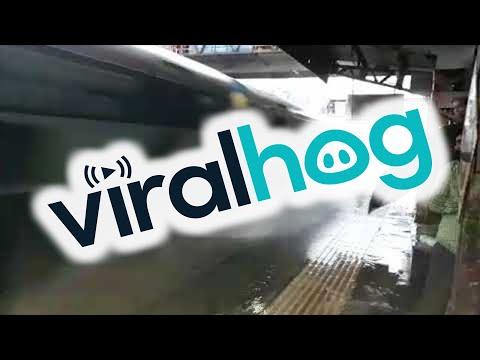 """Intialainen """"reilukerho""""-juna ohittaa aseman"""