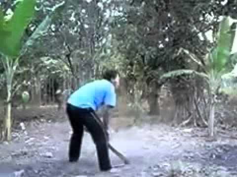 xxxnxxx - Video Lucu bersin ngeluarin sapi.