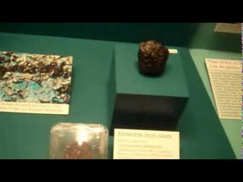 TFX - Natural History Museum - 07