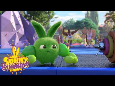 Cartoons For Children   SUNNY BUNNIES - WHO'S STRONGER ?   New Episode   Season 3