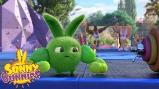 Video Cartoons For Children | SUNNY BUNNIES - WHO'S STRONGER ? | New Episode | Season 3 MP3, 3GP, MP4, WEBM, AVI, FLV September 2018
