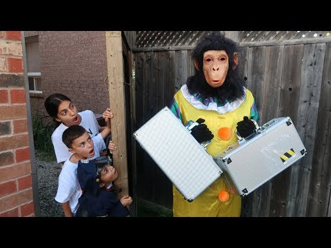 Kids Pretend Play Monkey in our House Surprise Toy