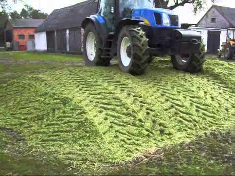 Akcja kukurydza 2010:)