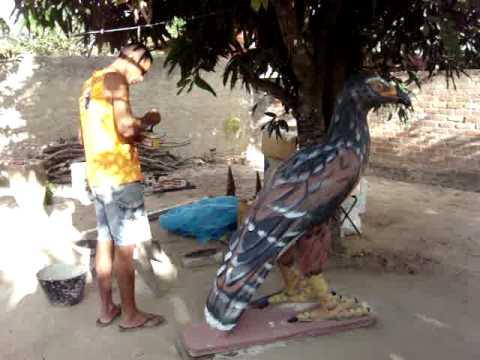 gavião de cimento