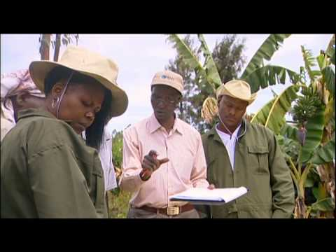 Shamba Shape Up Clips - Soil Testing And Fertilisers