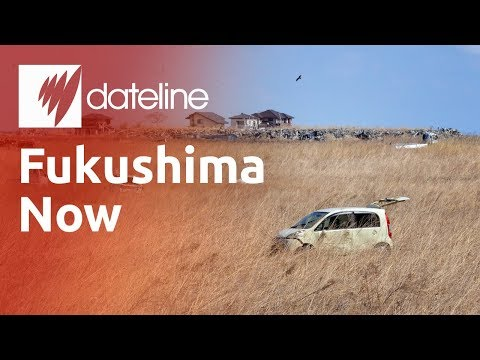 Fukushima - Dateline visits one of the most contaminated places on earth - the ghost towns around Fukushima - to see the effect of the nuclear meltdown two years on. For...
